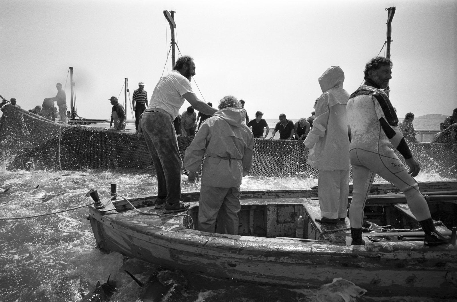 22 - MUCIARA DEL RAIS (Boat of the Rais)