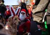 The Dog of Santa Claus
